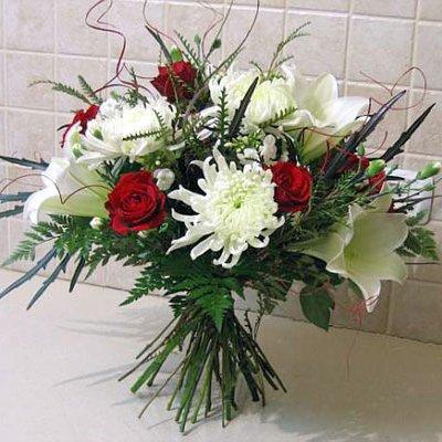 נשיקות של אושר - פרחי אלונה - טבריה