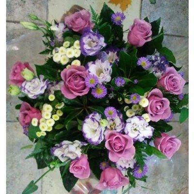 סגול מרגש - דבי פרחים - קרית ביאליק