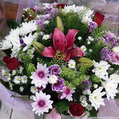 ססגוני - פלורנס פרחים - נהריה