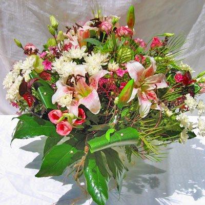 עתיד ורוד - פרחי אלונה - טבריה