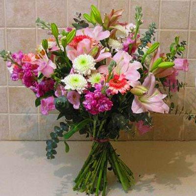 פיתוי מתוק - פרחי אלונה - טבריה