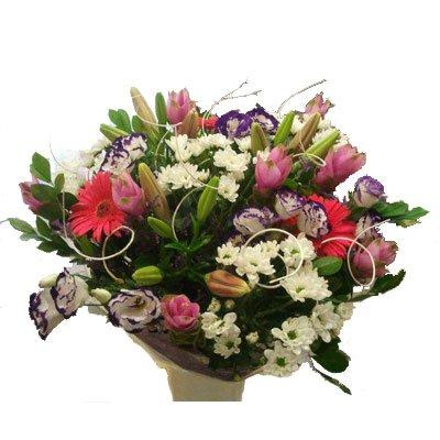 פסטלי - דבי פרחים - קרית ביאליק