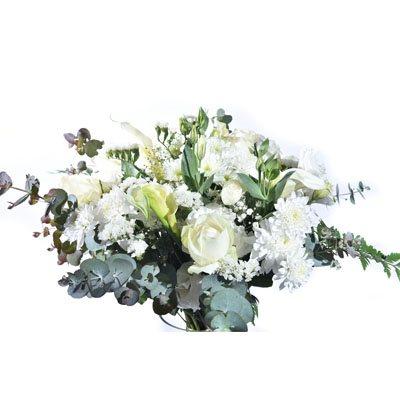 פרחים לבנים - פרח בר - עמק חפר
