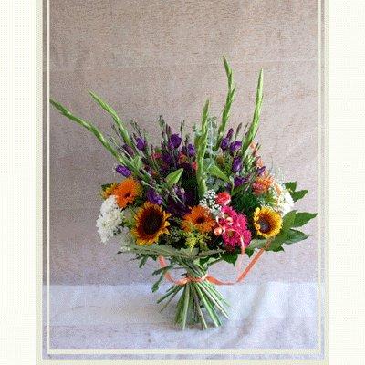 פרחי העונה - פרחי אורית - עכו