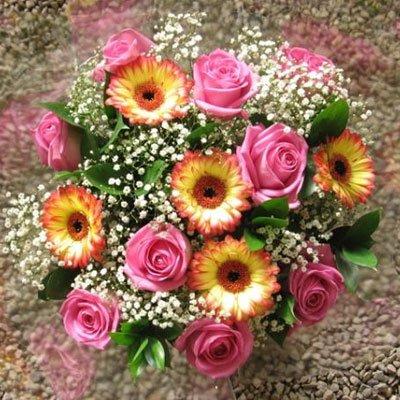 פשוט יפה - פרחי אודי ודורית - קרית אתא