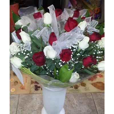 קלאסי רומנטי - דבי פרחים - קרית ביאליק