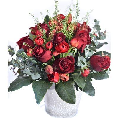 שיא הרומנטיקה - פרח בר - עמק חפר