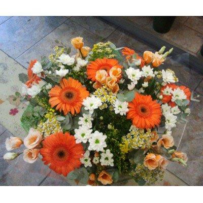 שקיעה - דבי פרחים - קרית ביאליק