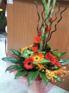 זר 10 - פרחי ספיר - באר שבע