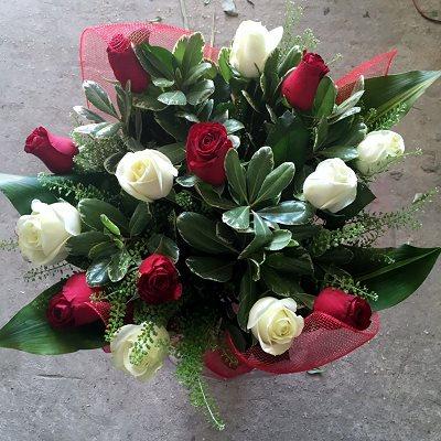 קלאסי באדום לבן  - פרח וסימפטיה - זכרון יעקב