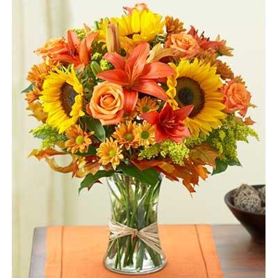 זר 16 - בשמת פרחים - שדרות