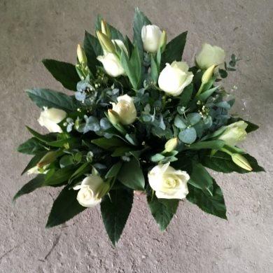 לבן אלגנטי - פרח וסימפטיה - זכרון יעקב