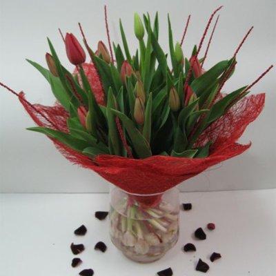 זר 19 - בשמת פרחים - שדרות