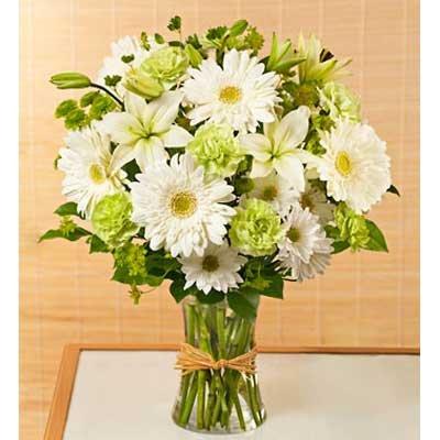 זר 2 - בשמת פרחים - שדרות