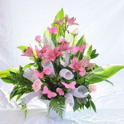 2 - פרחי מזי - נתניה