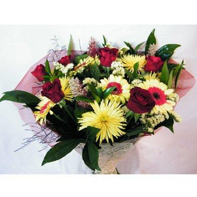23 - רנה פרחים - מעלה אדומים