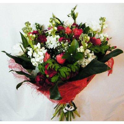 25 - רנה פרחים - מעלה אדומים