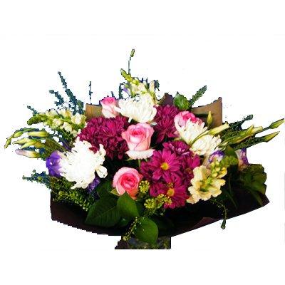 פינוק ורוד 27 - רנה פרחים - מעלה אדומים