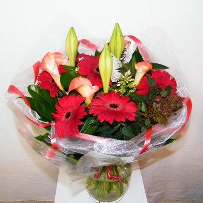 32 - רנה פרחים - מעלה אדומים