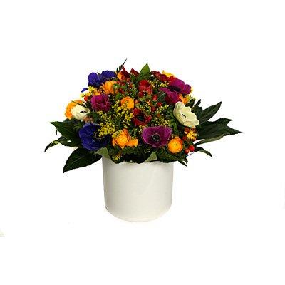 זר 4 - פרחי אלונה - טבריה