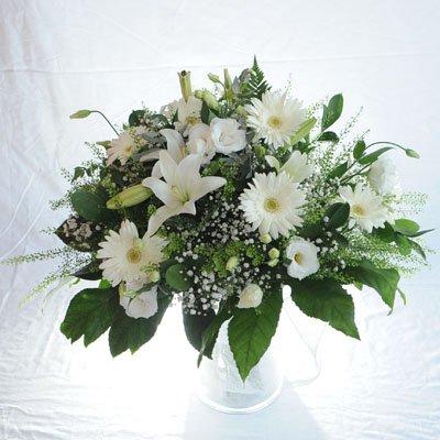 5 - פרחי מזי - נתניה