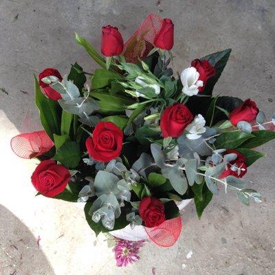 פרח וסימפטיה - פרח וסימפטיה - זכרון יעקב