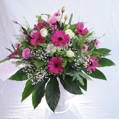 6 - פרחי מזי - נתניה