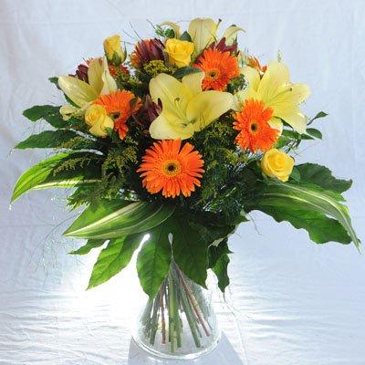 7 - פרחי מזי - נתניה