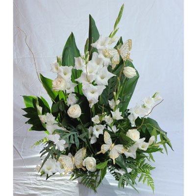 9 - פרחי מזי - נתניה