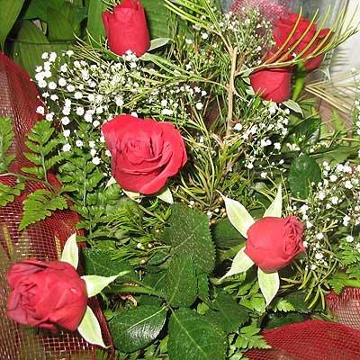 זר ורדים (בכל צבע) - פרחי ויולט - אריאל