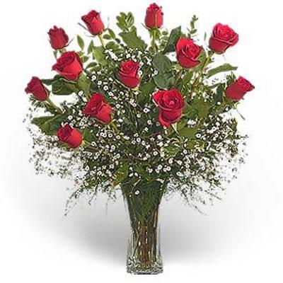 אהבה בשחקים - פרחי גילי - רמת גן