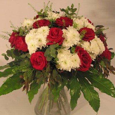 אהבה כפרית - פרחים קוליברי - רמת גן