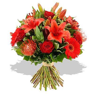 אהבה לוהטת - פרחי גילי - רמת גן