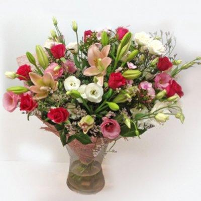 אהבה קסומה - תלתן פרחים - צפת