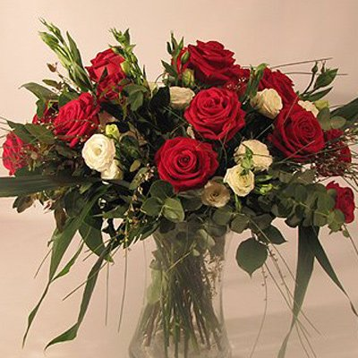 אהבה - פרחים קוליברי - רמת גן