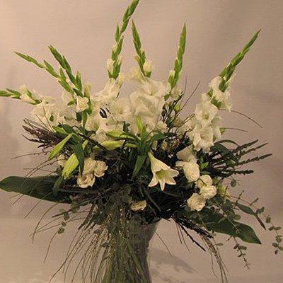 אלגנטי בלבן  - פרחים קוליברי - רמת גן
