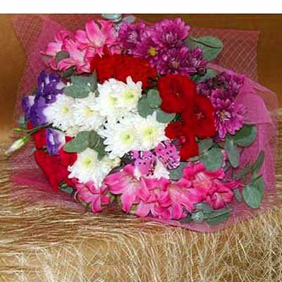 בוקה בסגנון צרפתי - פרחים קוליברי - רמת גן