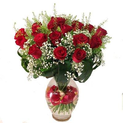 געגועים - תלתן פרחים - צפת