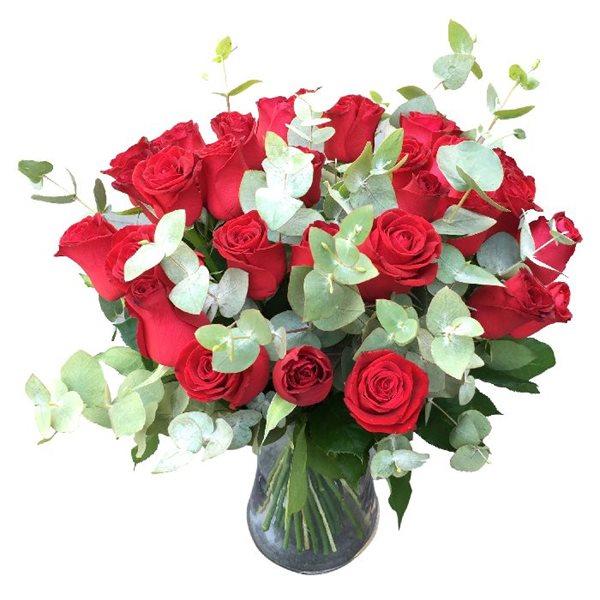 ורדים אדומים - פרחי דליה בירושלים - ירושלים