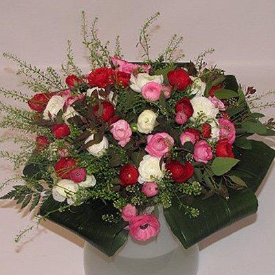 חיוך חורפי - פרחים קוליברי - רמת גן