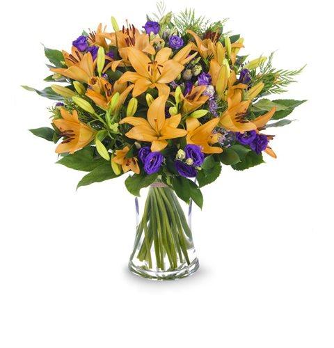 חיוכים - פרחי עירית - פתח תקווה