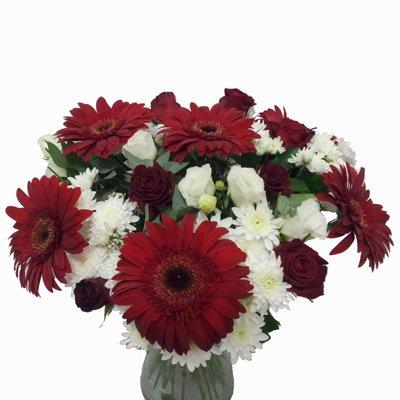 חמד אהבה - פרחי חמד - קדומים