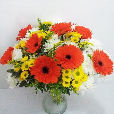 חמד זורח - פרחי חמד - קדומים