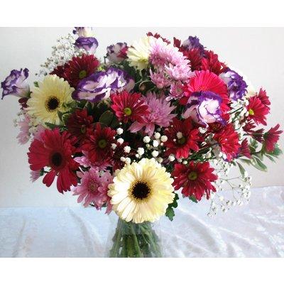 חמד חגיגי - פרחי חמד - קדומים