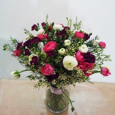 חמד חורפי - פרחי חמד - קדומים