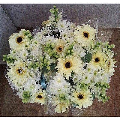 חמד טהור - פרחי חמד - קדומים