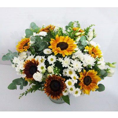 חמד מואר - פרחי חמד - קדומים