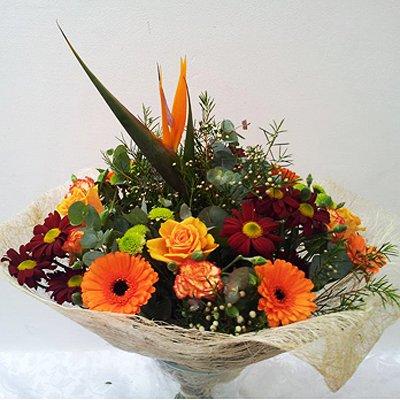 חמד מיוחד - פרחי חמד - קדומים