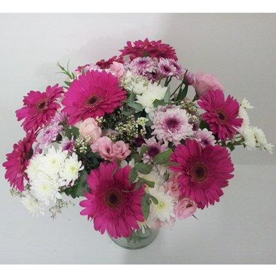 חמד סגול לבן - פרחי חמד - קדומים
