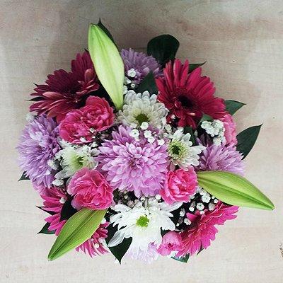 חמד שמח - פרחי חמד - קדומים